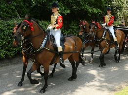 Royal Ascot 2013 Day 2 - Alan Meeks (7)