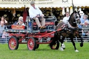 Picture Courtesy of Get Surrey (169th Annual show!)