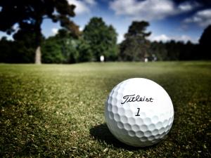 Pine Ridge Golf Club (12)